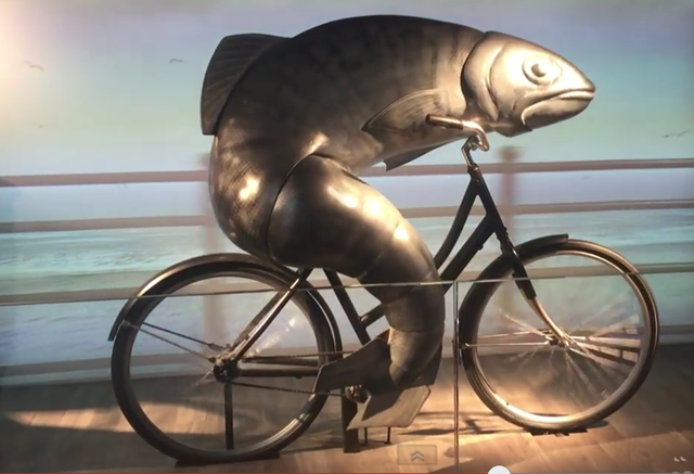 the-fish-needs-a-bike